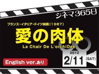 1948_kiji_3.jpg
