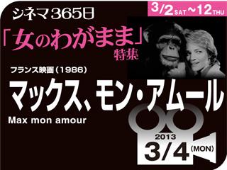 4293_kiji_3.jpg