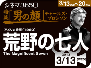 4358_kiji_3.jpg