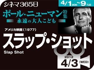 4452_kiji_3.jpg