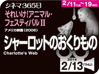6338_kiji_3.jpg