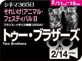 6339_kiji_3.jpg