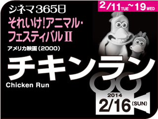 6341_kiji_3.jpg