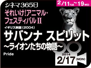 6342_kiji_3.jpg