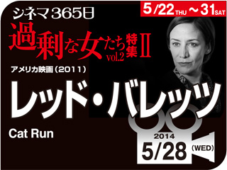 6929_kiji_3.jpg