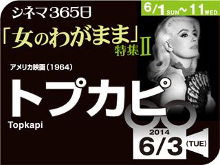 6996_kiji_3.jpg