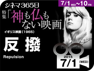 8915_kiji_3.jpg