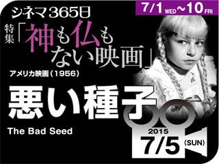 8919_kiji_3.jpg