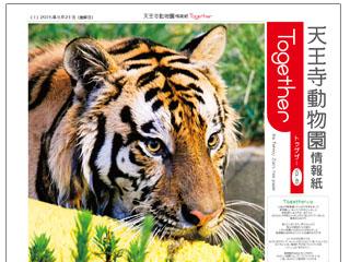9183_kiji_3.jpg