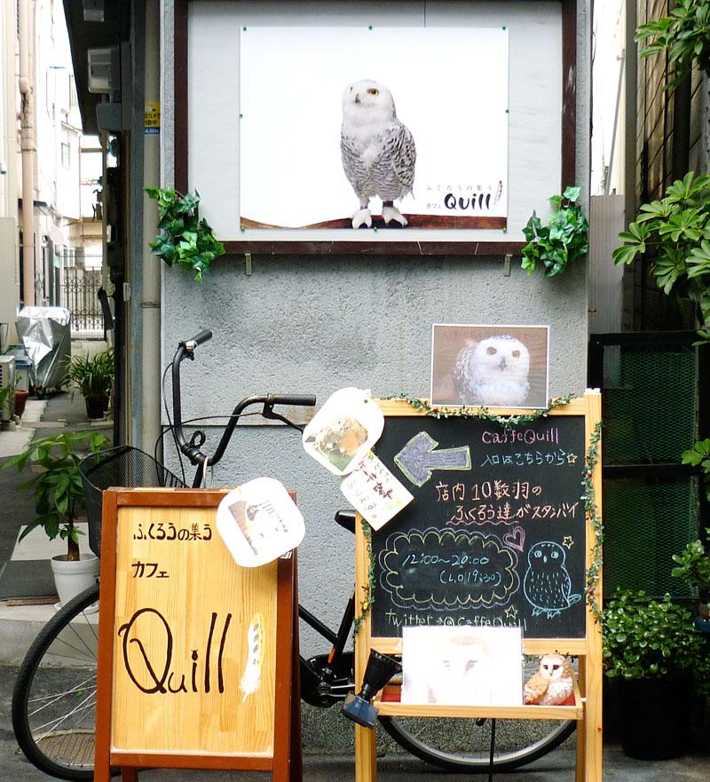 ふくろうの集うカフェ クイル