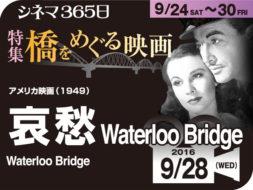 哀愁(1949年 恋愛映画)