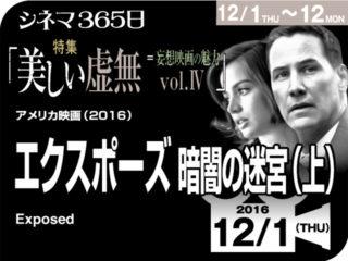 エクスポーズ 暗闇の迷宮(2016年 サスペンス映画)(上)