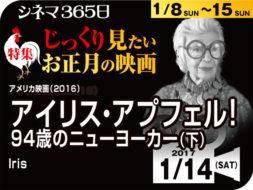 アイリス・アプフェル! 94歳のニューヨーカー(下) (2016年 ドキュメンタリー映画)