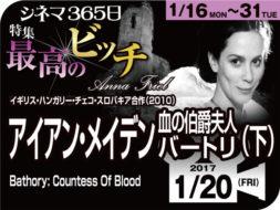 アイアン・メイデン 血の伯爵夫人バートリ(下)(2008年 事実に基づく映画)