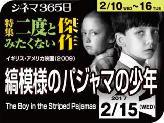 縞模様のパジャマの少年(2009年 事実に基づく映画)