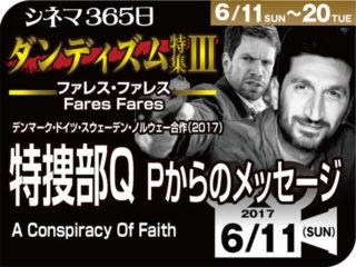特捜部Q/Pからのメッセージ(2017年 サスペンス映画)