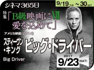 スティーブン・キング ビッグ・ドライバー(2014年 日本未公開)