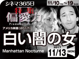 白い闇の女(2017年 ミステリー映画)