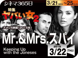 Mr.&Mrs.スパイ(2017年 日本未公開)