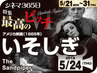 いそしぎ(1965年 恋愛映画)