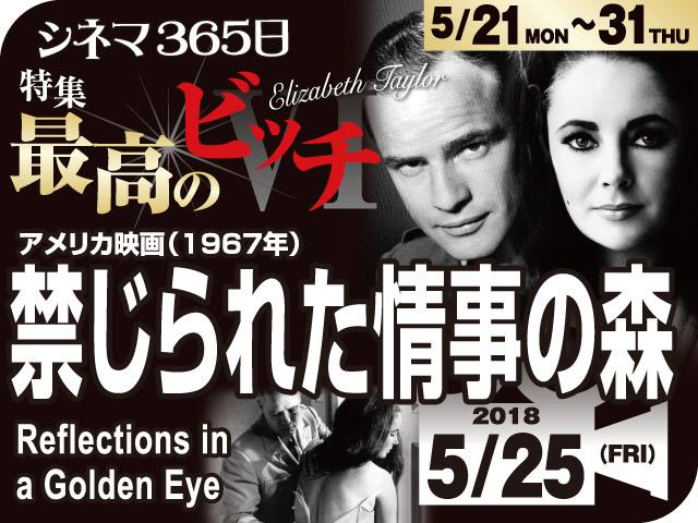 禁じられた情事の森(1967年 社会派映画)