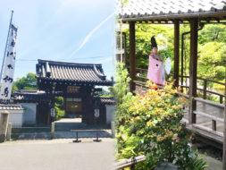 103名の読者を魅了!今様・白拍子の舞と精進料理|京都・法住寺