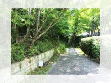 グランドプリンスホテル京都 日本庭園の中に佇む数寄屋造りの茶寮で 辻留の限定懐石料理を堪能!