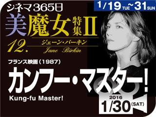 カンフー・マスター(1987年 恋愛映画)