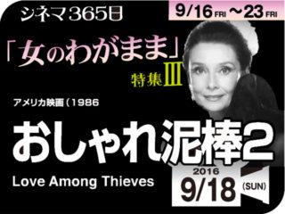 おしゃれ泥棒2(1986年 コメディ映画)