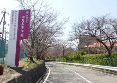 四天王寺学園で観桜とお薄を愉しむ
