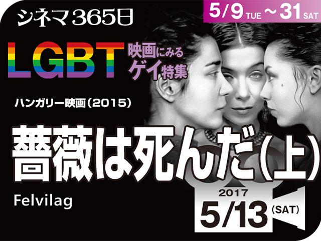 ゲイ 映画 公開 日本