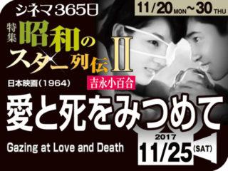 愛と死をみつめて(1964年 事実に基づく映画)