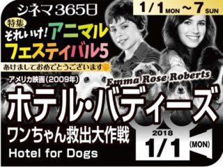 ホテル・バディーズ/ワンチャン救出大作戦(2009年 コメディ映画)