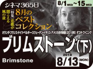 ブリムストーン(下)(2018年 社会派映画)