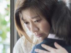 松竹ナビ(株)「映画『人魚の眠る家』プレスシート」 3名様にプレゼント
