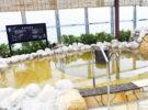 癒しと寛ぎの天然温泉・総合温浴施設「SPA&HOTEL 水春 松井山手」が12月7日(金)待望のオープン!