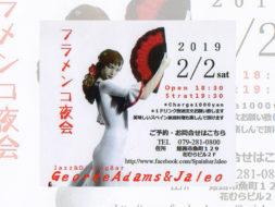 「フラメンコ夜会」 in2月2日(土) 姫路、「Jazz&Dining Bar George Adams &Jaleo」にて開催