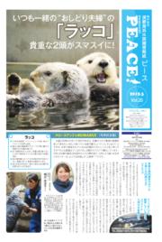須磨海浜水族園情報紙 Peace vol.19 2019年3月11日号(スマスイ ピース)