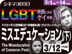 ミスエデュケーション(下)(2018年 ゲイ映画 劇場未公開)