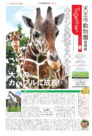 天王寺動物園情報誌 Togerher(トゥゲザー) 2019年08月16日号