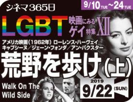 荒野を歩け(上)(1962年 ゲイ映画)