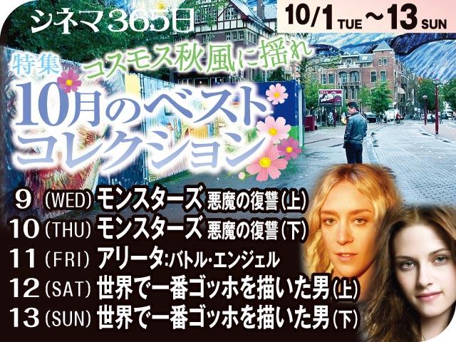 コスモス秋風に揺れ/10月のベストコレクション