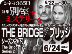 THE BRIDGE/ブリッジ2(下)(2014年 テレビ映画)