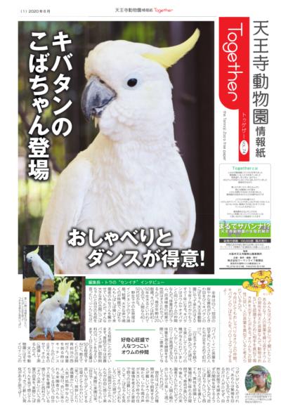 天王寺動物園情報誌 Together(トゥゲザー) 2020年06月26日号
