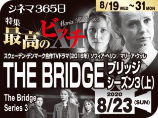 THE BRIDGE/ブリッジ3(上)(2016年 ミステリー映画・テレビ映画)