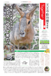 天王寺動物園情報誌 Together(トゥゲザー) 2020年08月21日号