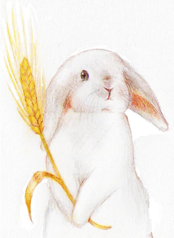 おいしい自然が大好き!ちょいまるの野草・やさい活用術【秋味ドレッシングを手作り!】
