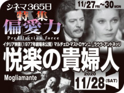 悦楽の貴婦人(1977年 劇場未公開)