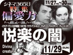 悦楽の闇(1987年 恋愛映画)