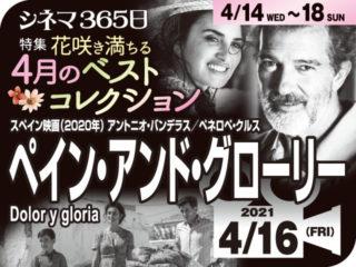 ペイン・アンド・グローリー(2020年 自伝映画)